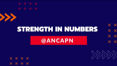 """The ANCA - Professional Network's """"Strength in Numbers"""" Initiative raises funds for Artsakh"""