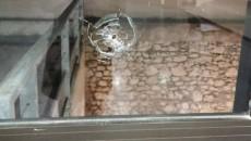 Shots were fired at the Sahag-Mesrob Armenian Center in Marseilles, France on Jan. 24