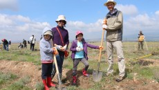 Planting in ATP's Ashtarak Park with the US Embassy's Green Team